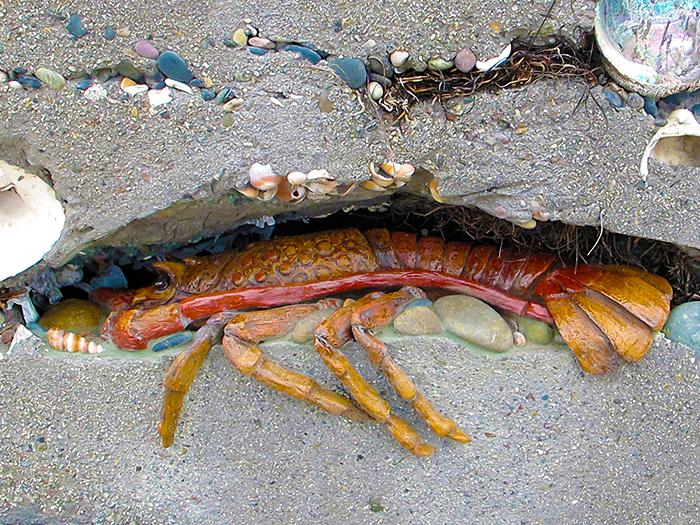 2_Burger_lobster_sediment_wall