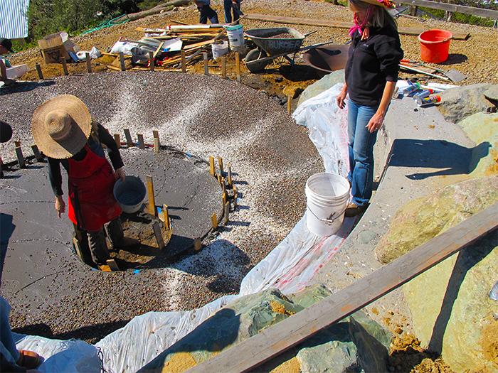 5_Burger_seeding_concrete_nautilus