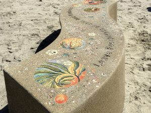 Moonlight Beach Tribute Bench